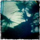 the desert has a shadow